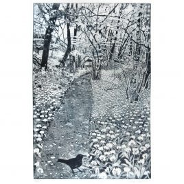 C6332 Spring Walk – Janis Goodman
