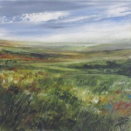 C6345 Exmoor in Autumn – Tess Armitage