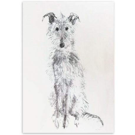 scruffyhound