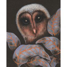 1172C Owl – Louise Crabb