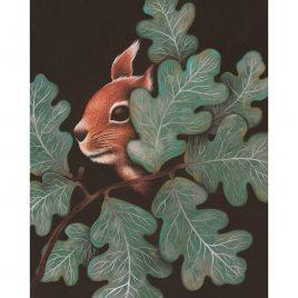 1171C Squirrel- Louise Crabb