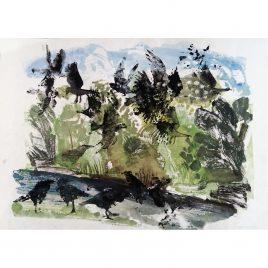 1164C Crows – Sally Muir