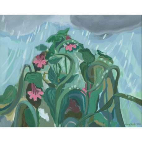 Raindrops on Pink Campion