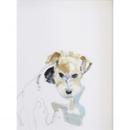 C3931 Wire Haired Terrier – Sally Muir