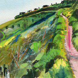 1357C Rugged Coast Path 2 – Leo Davey