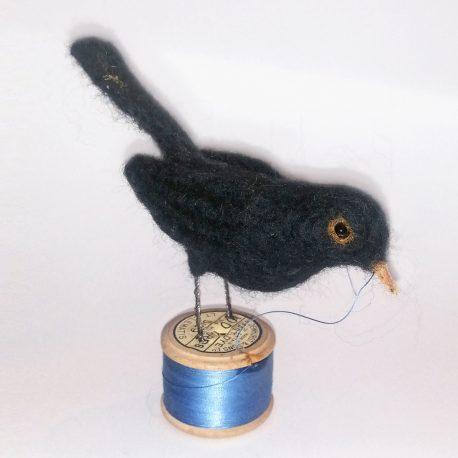 Blackbird on blue
