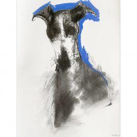 1576C Hound on Blue – Sally Muir