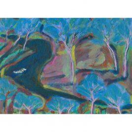 1615C Dalmation Swimming – Hannah Roberts