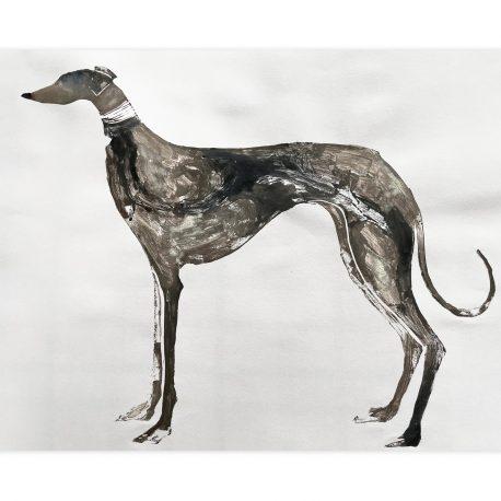 greyhound – Copy