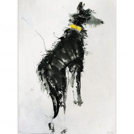 1593C Yellow Collar – Sally Muir