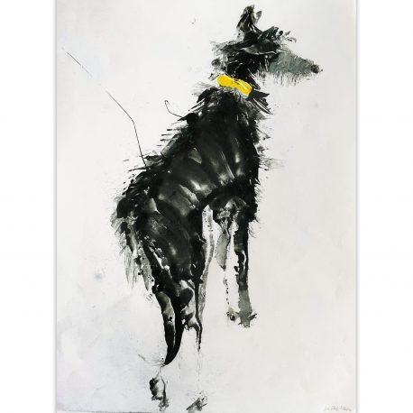 yellow collar – Copy